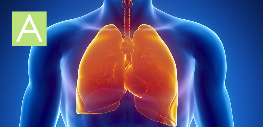 Asthma doctors in Houston TX specialize in use of best asthma inhalers